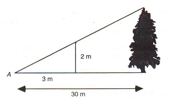 trigonometry applications worksheet